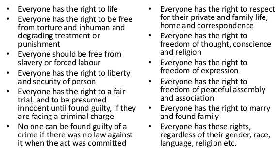 human rights meditation