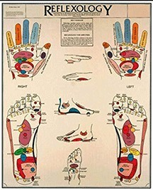 reflexology map of hands and feet