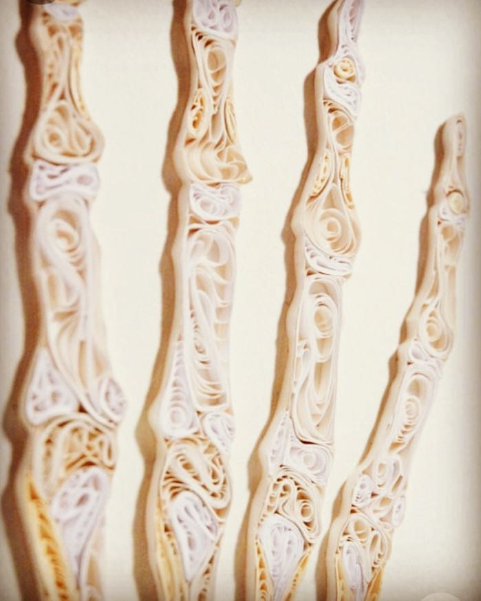 Bone growth in paper